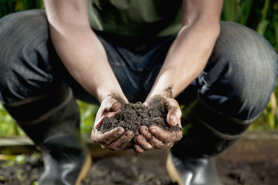 Man wearing jeans and boots holding dirt in hands