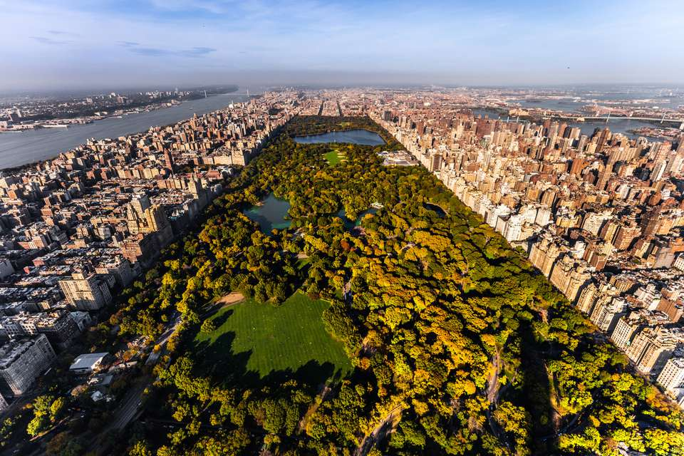 'Aerial view of Central Park, NYC'