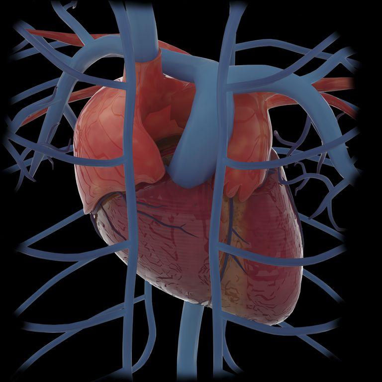 miocarditis sintomas, tratamiento y causas