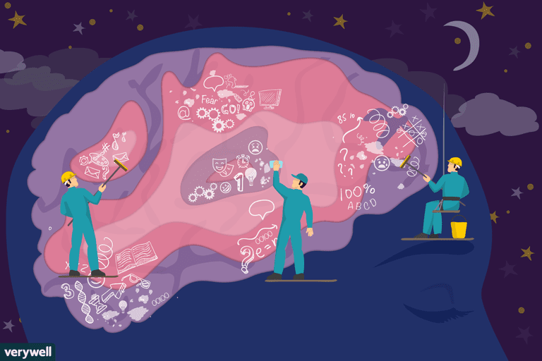 how sleep restores the brain