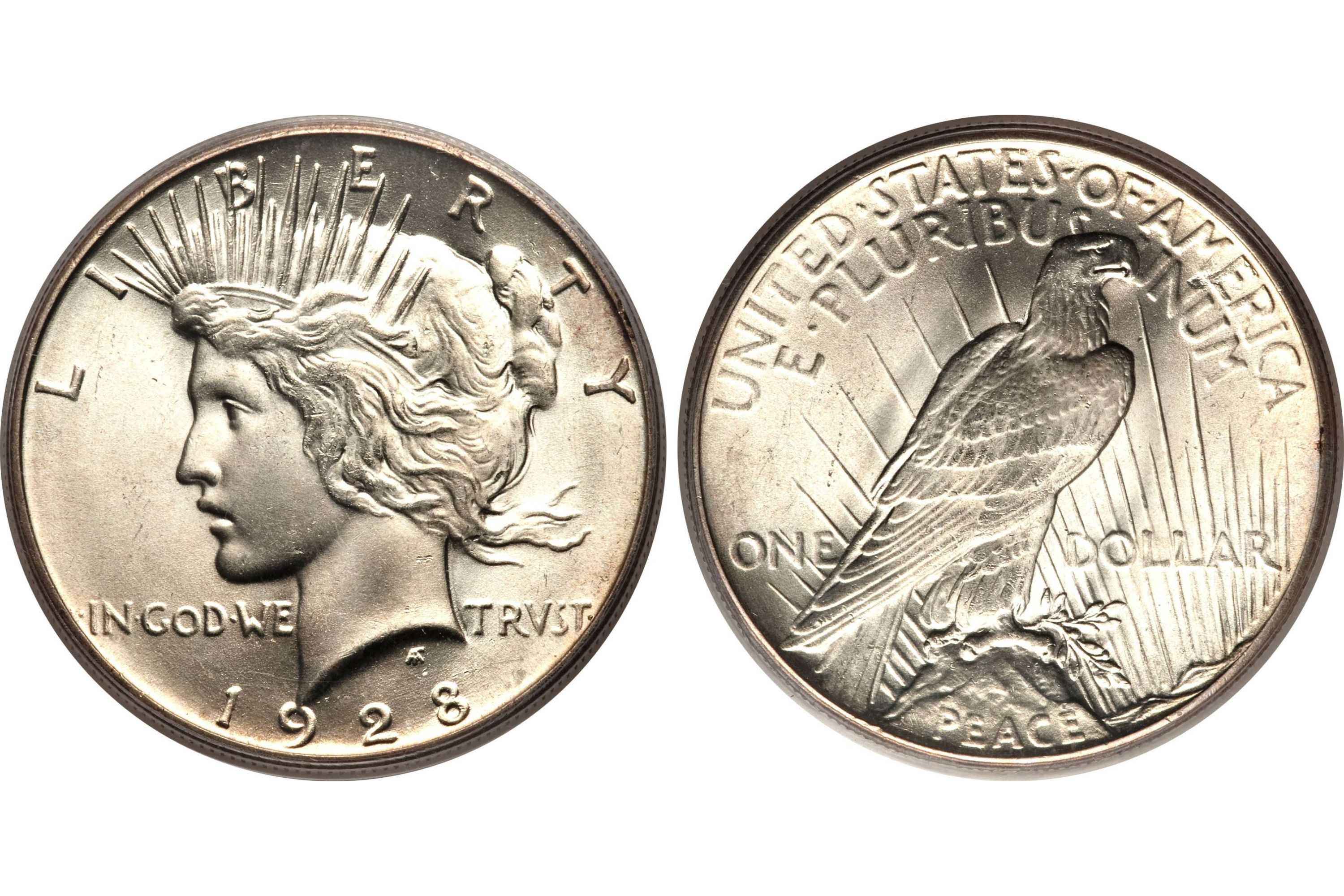 Peace Silver Dollar Profile