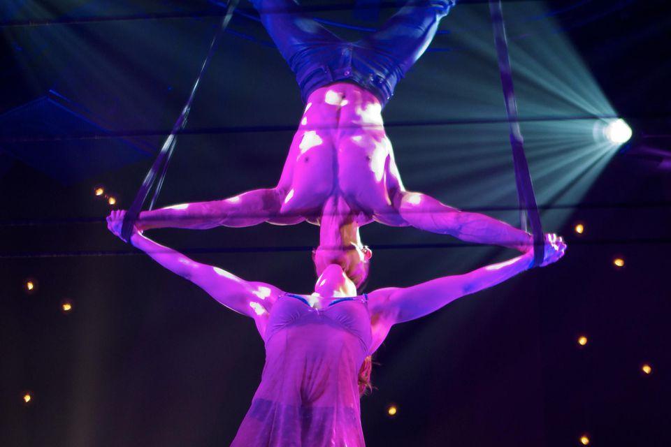 Absinthe Brilliant show