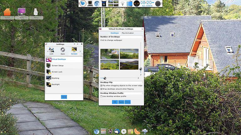 Enlightenment - Virtual Desktop Settings