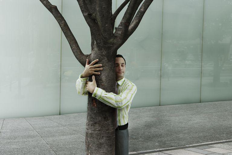 I got Tree Hugging Novice. Quiz: Are You a Tree Hugger?
