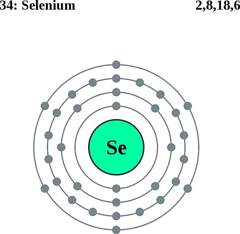 Atoms diagrams electron configurations of elements selenium atom electron shell diagram ccuart Gallery