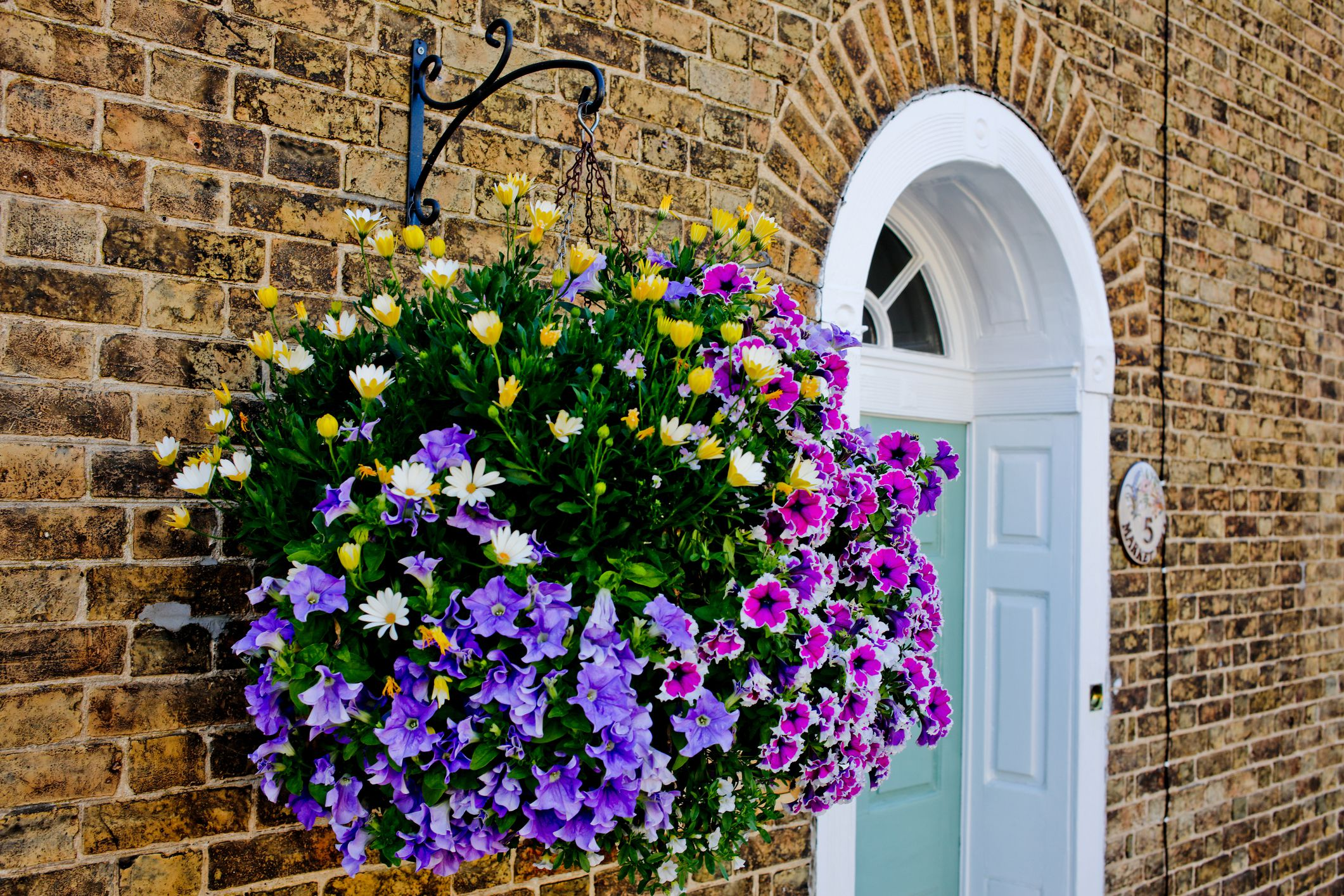 How to Prepare a Hanging Basket: 7 Steps (with Pictures ...
