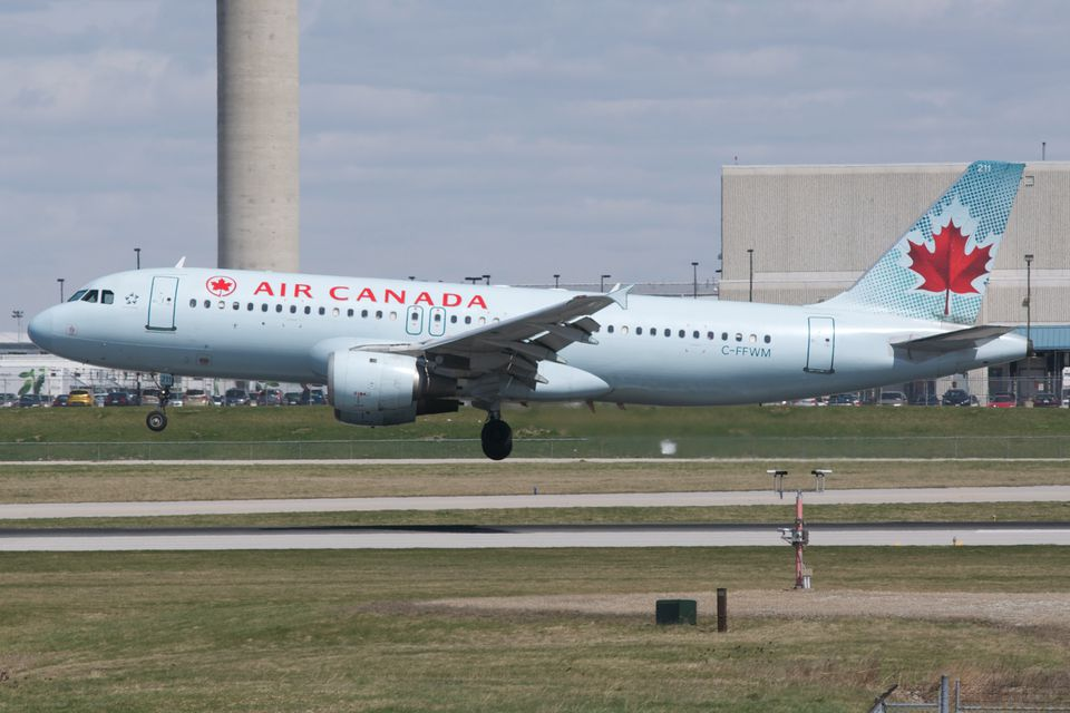 The truth about flying with cats and dogs for Air canada pet in cabin