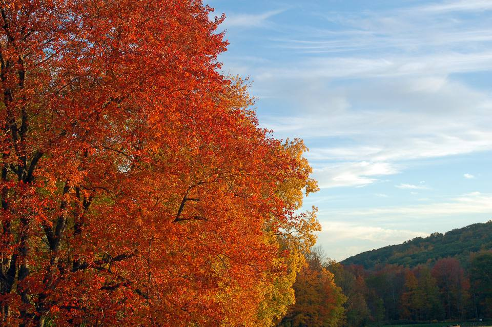 New England Best Time for Fall Foliage
