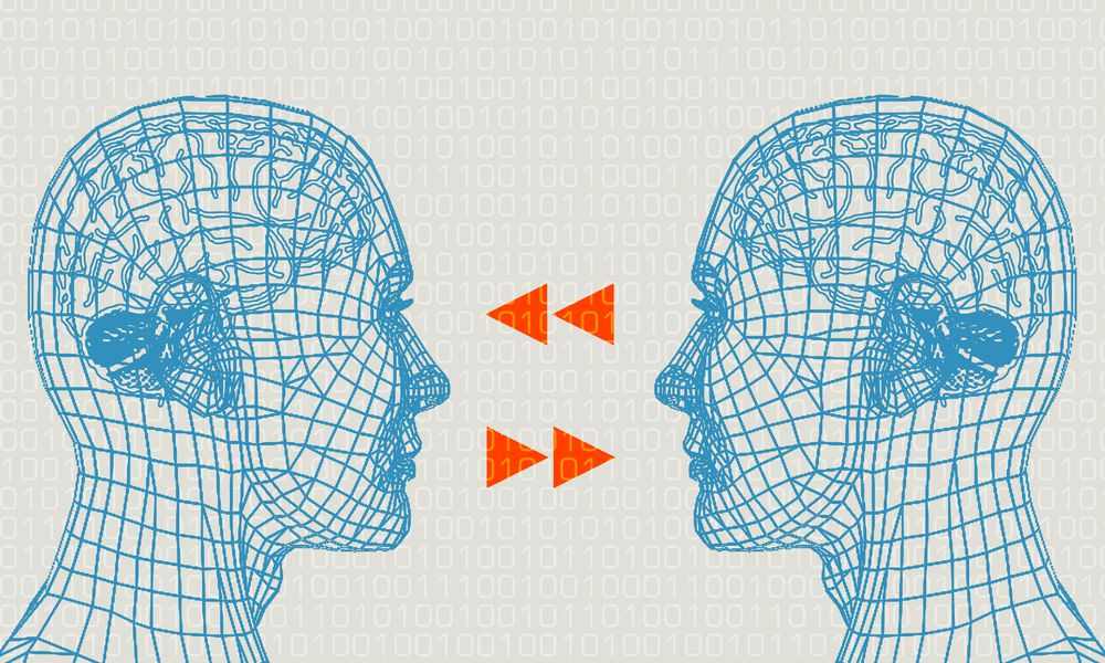 Two brains in communication