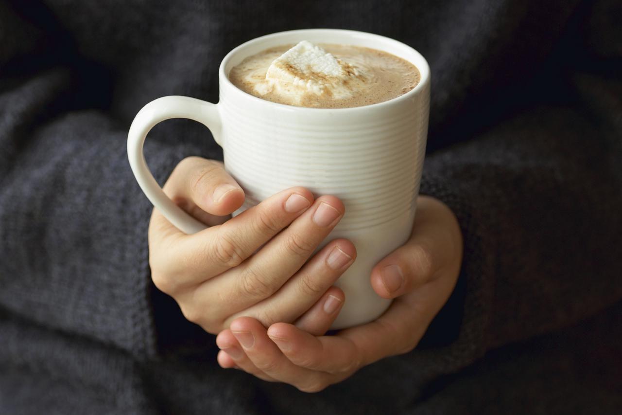 French Hot Chocolate Recipe Chocolat Chaud