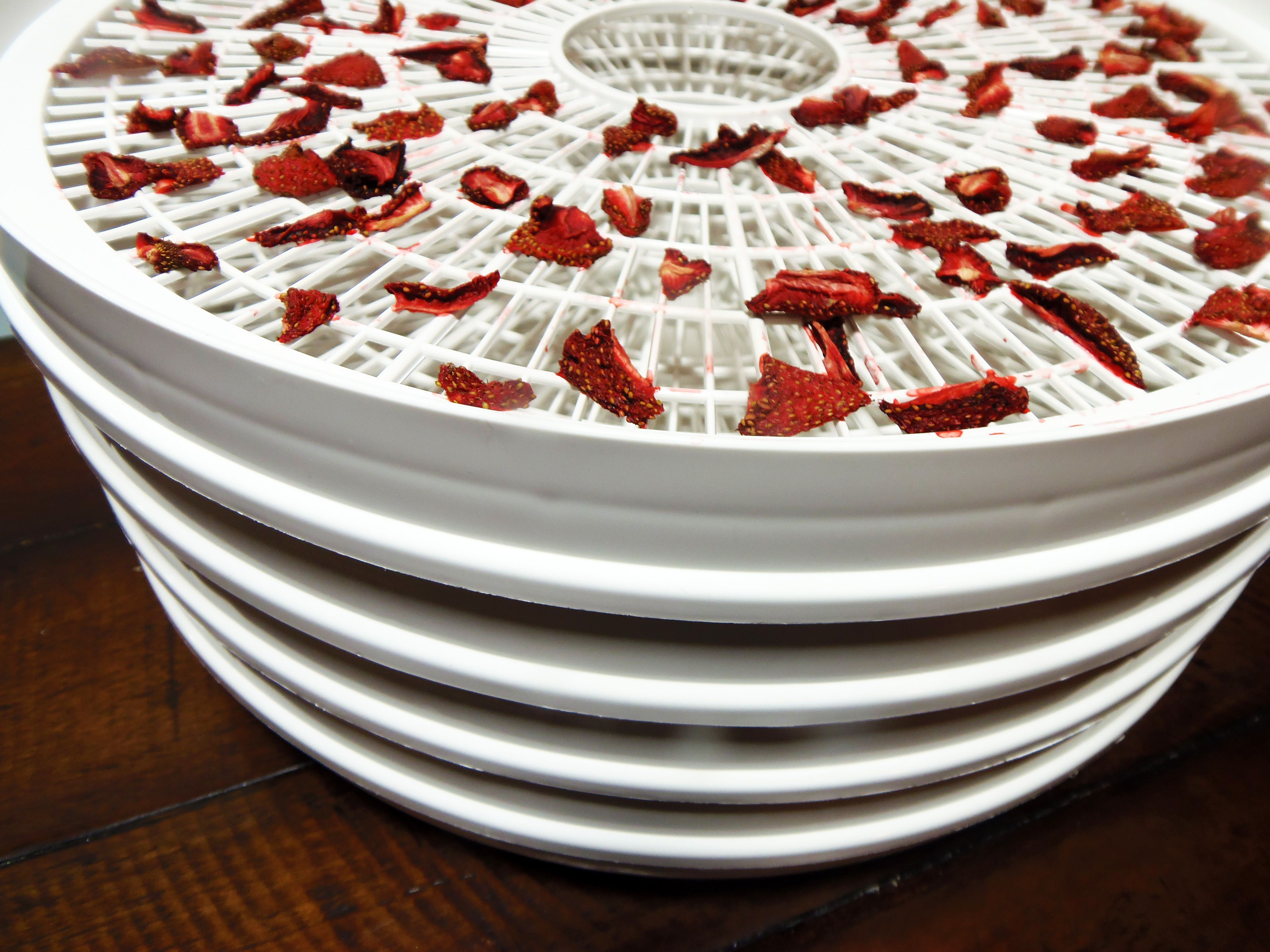 how to dry fruits and vegetables with a dehydrator