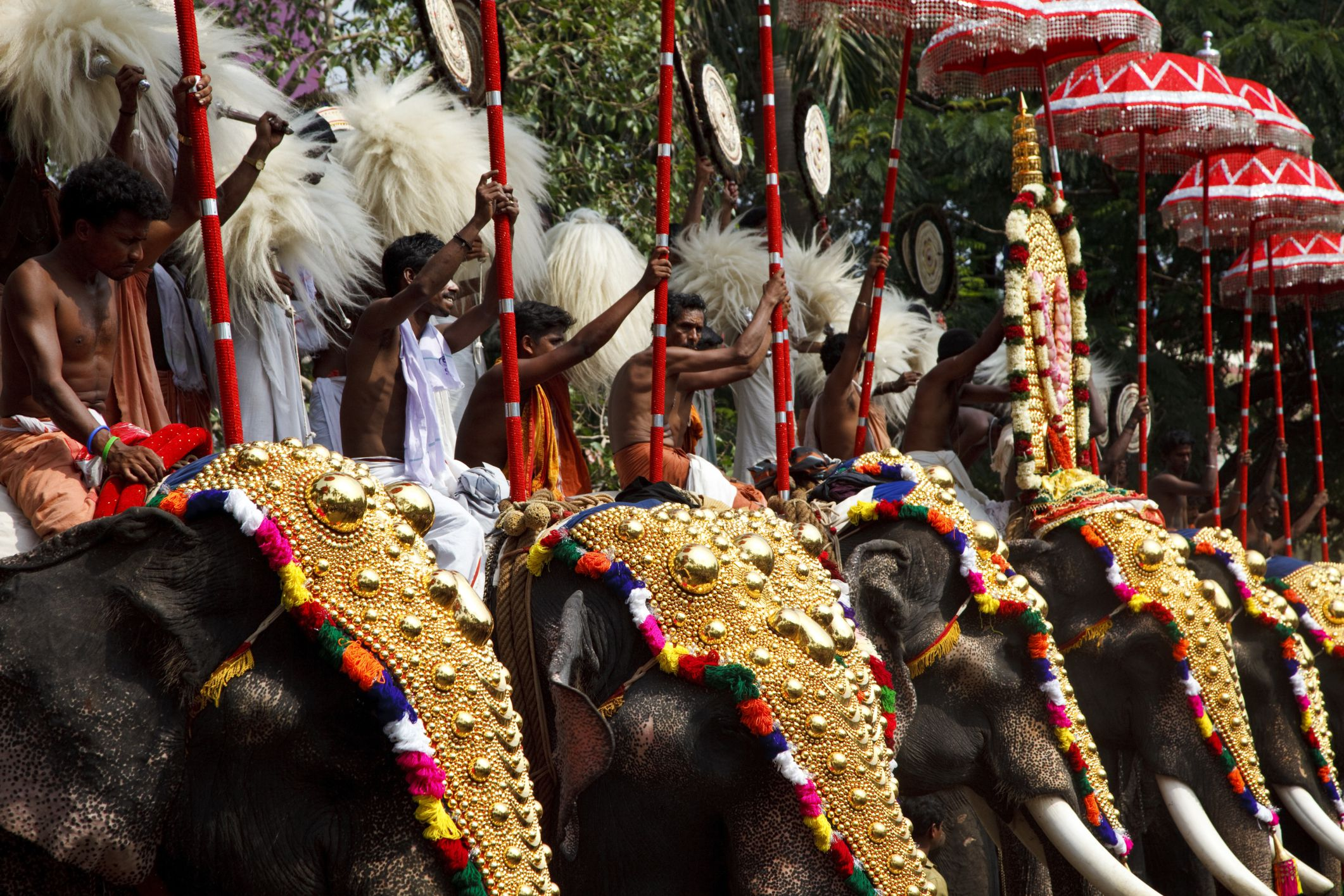 Kerala Temple and Elephant Festivals: Essential Guide