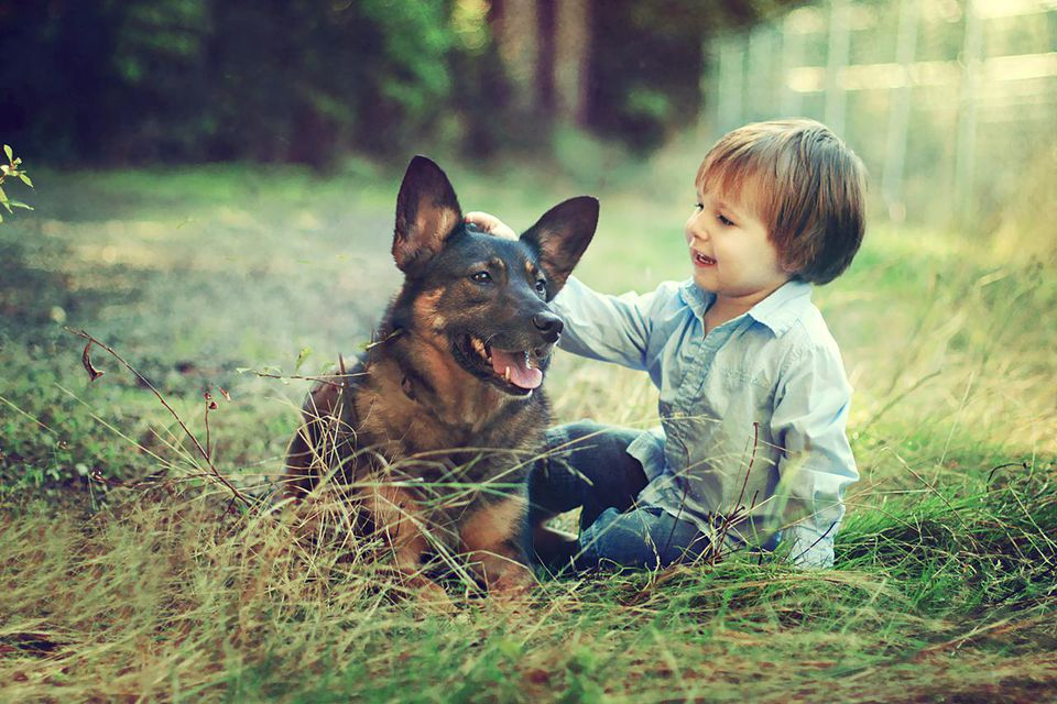 Toddler child with his dog.