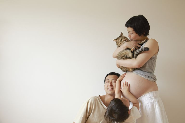 Families gather in the belly of pregnant woman.