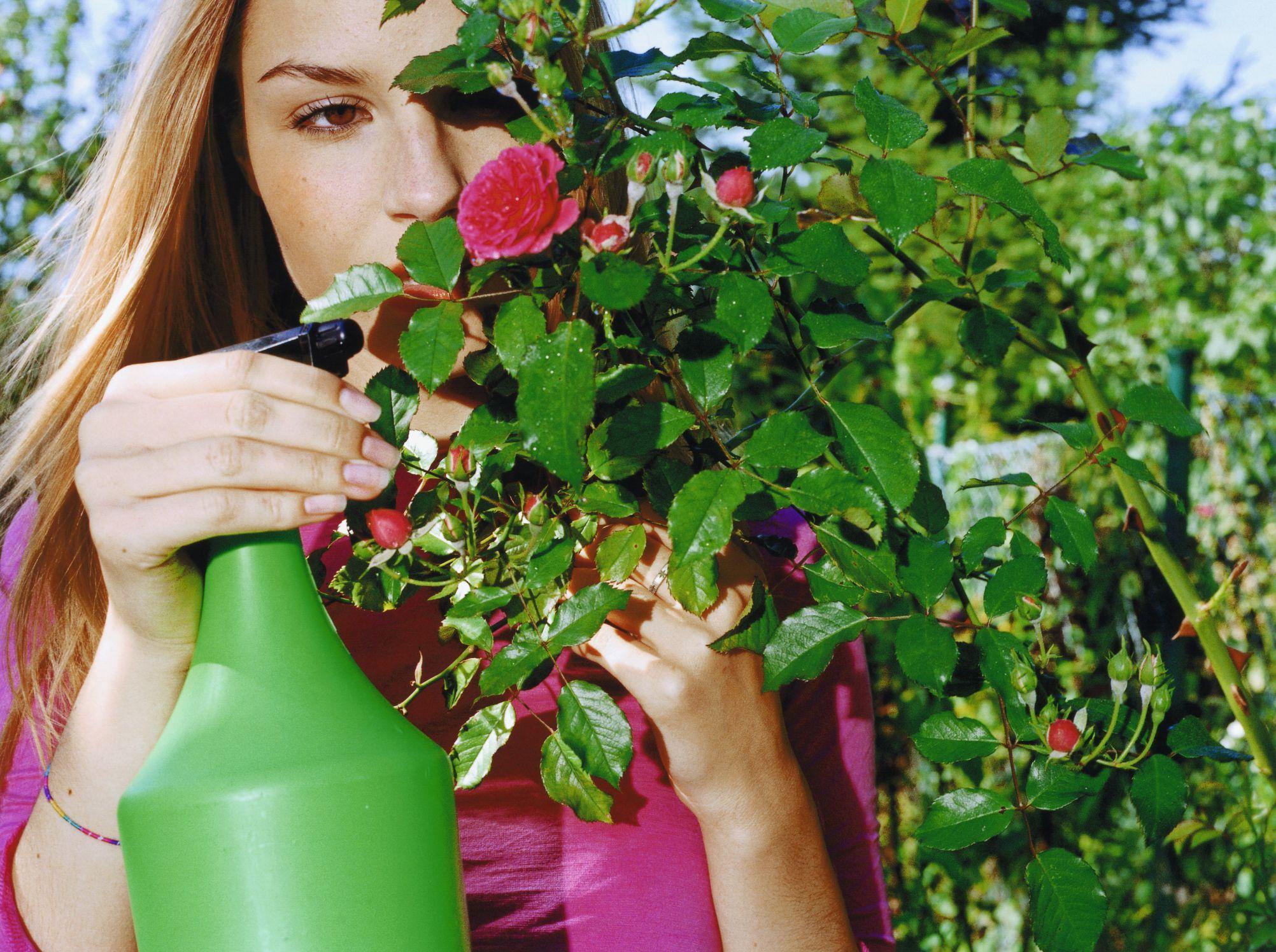 Homemade Flower Garden Pesticide