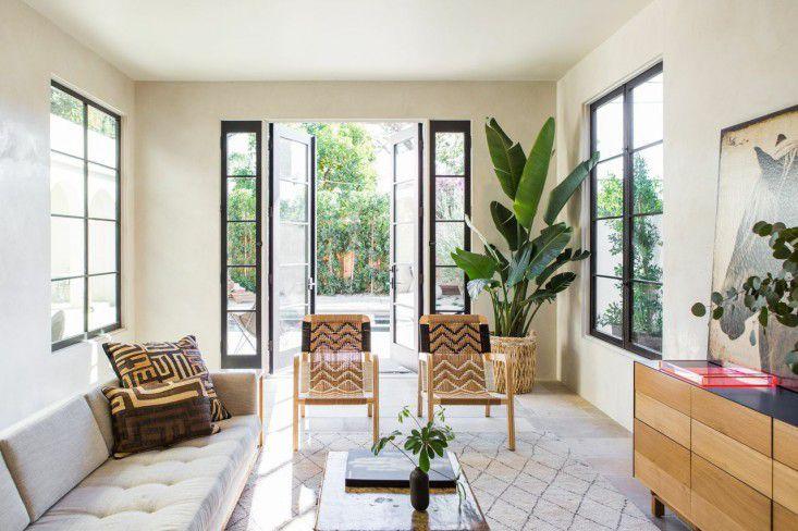 Modern room with a dramatic banana leaf plant