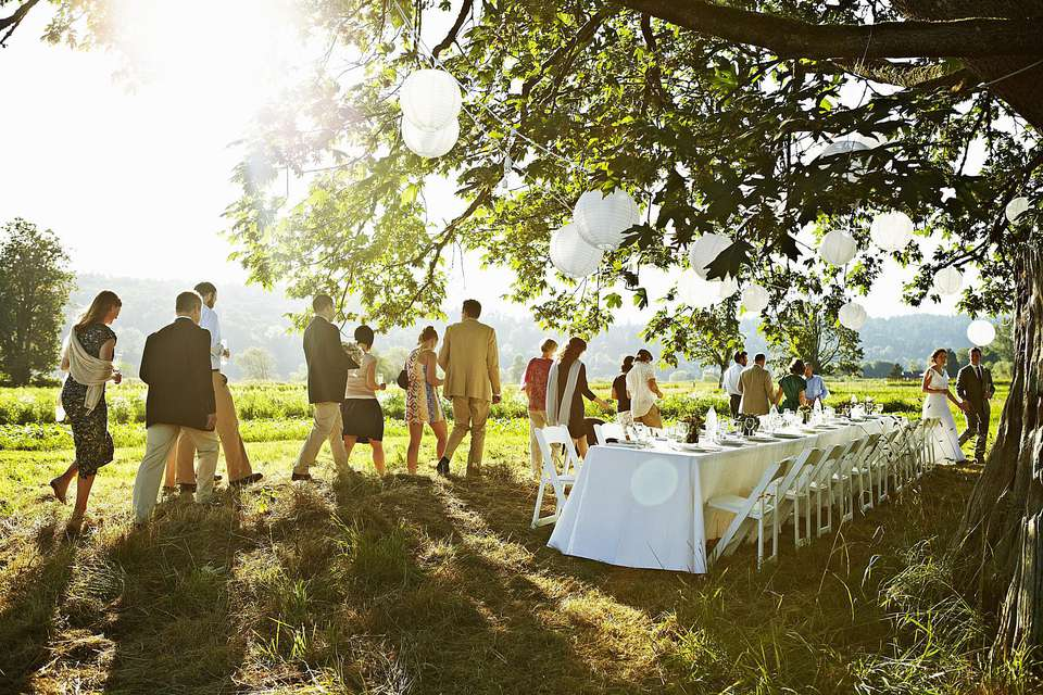 How to decorate a wedding on a budget junglespirit Image collections