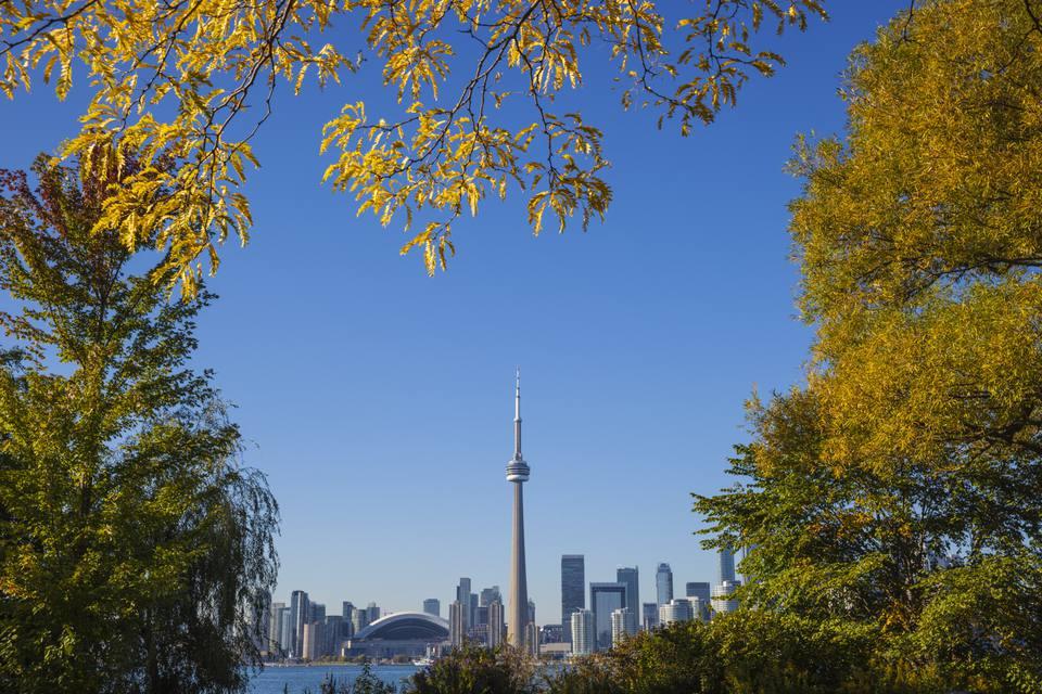 View of Toronto skyline in autumn
