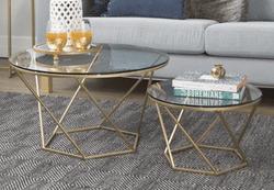 Aman 2 Piece Coffee Table Set