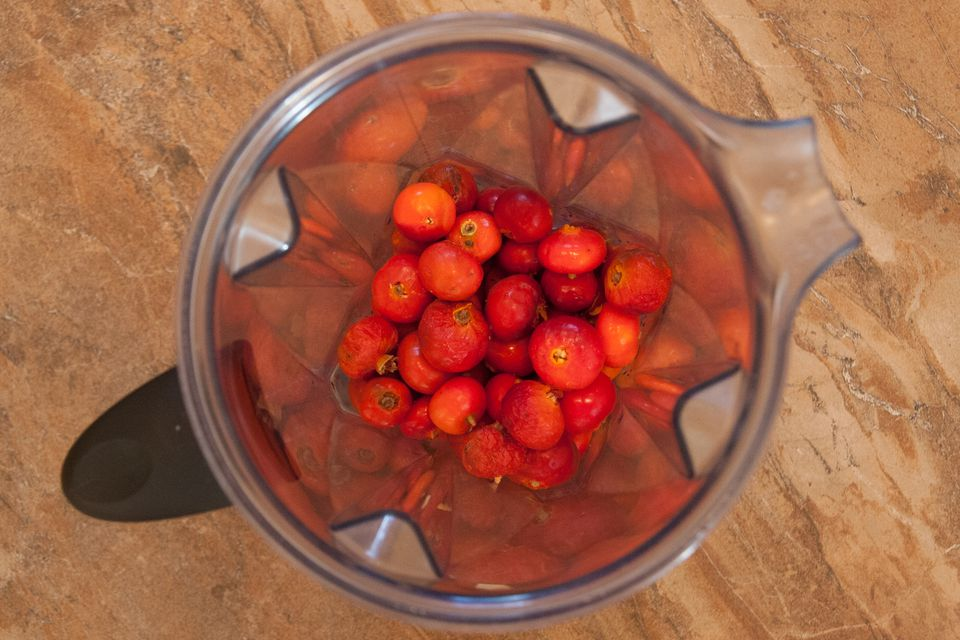Roughly chop your rose hips in a blender.