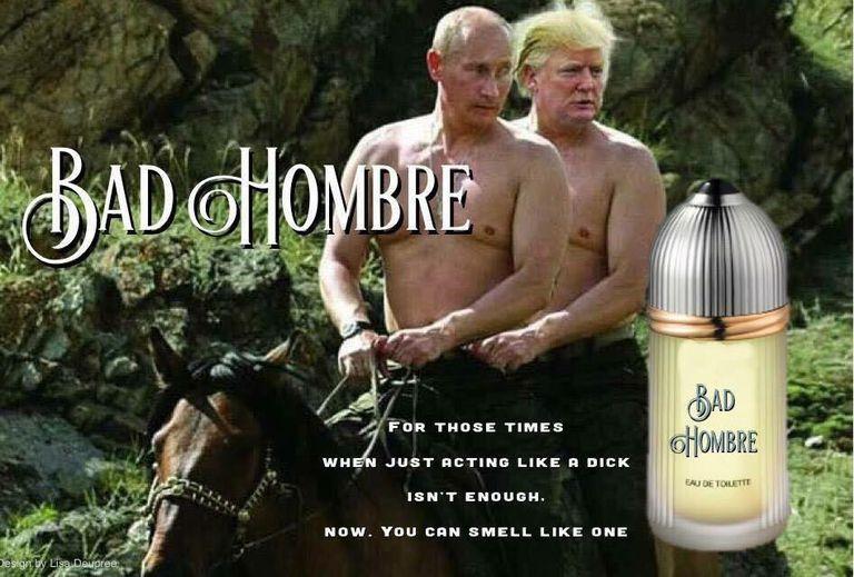 Donald Trump Funny Hair Memes : Funny election memes