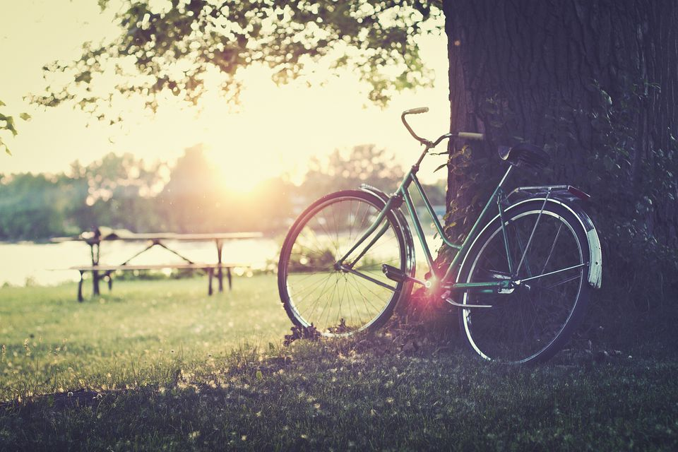 Montreal's best parks for cycling.