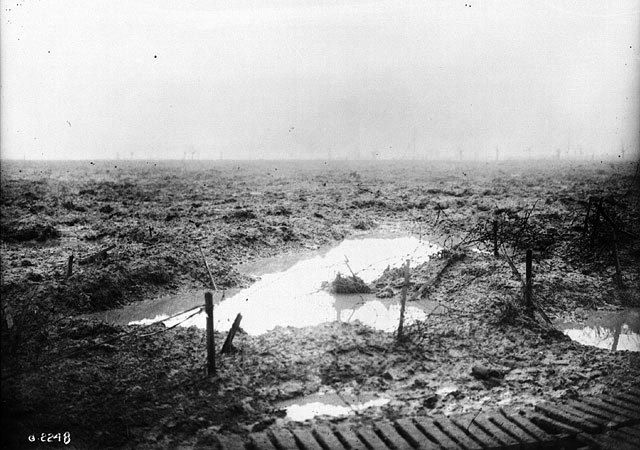 I got . Check Your Knowledge: Origins of WWI