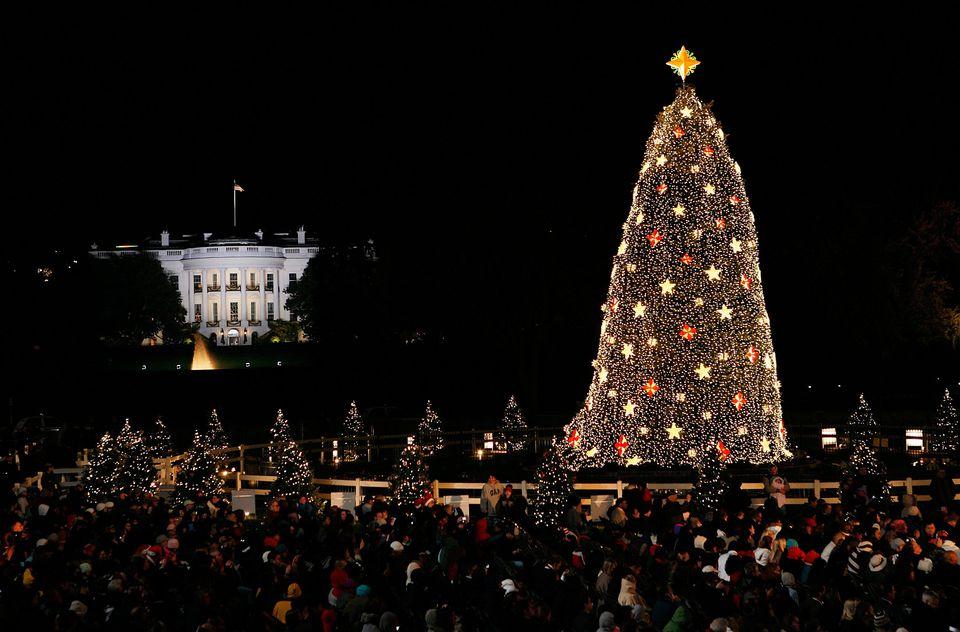 national christmas tree 2017 lighting tickets more - Christmas Tree Lights