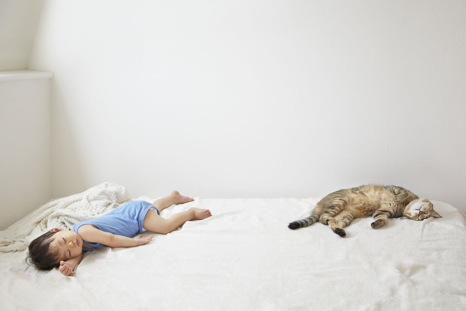 A baby sleeping with cat