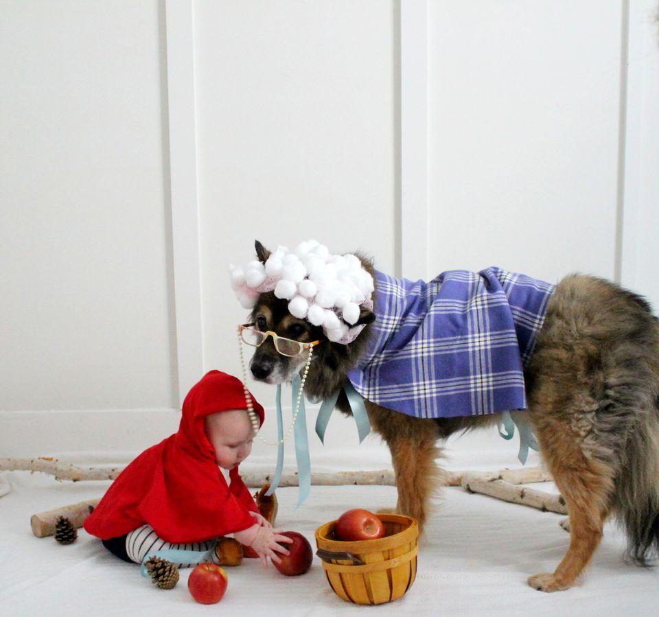 DIY Big Bad Wolf Halloween Costume