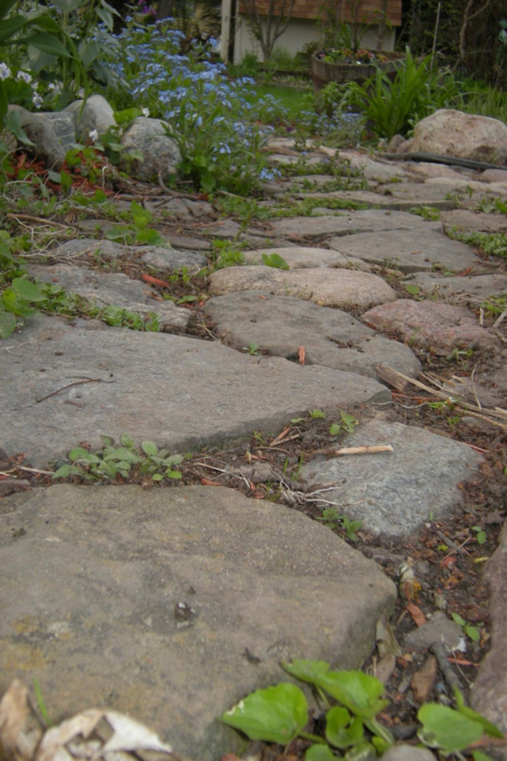 Uncategorized Flagstone Pathways smooth tight flagstone pathway