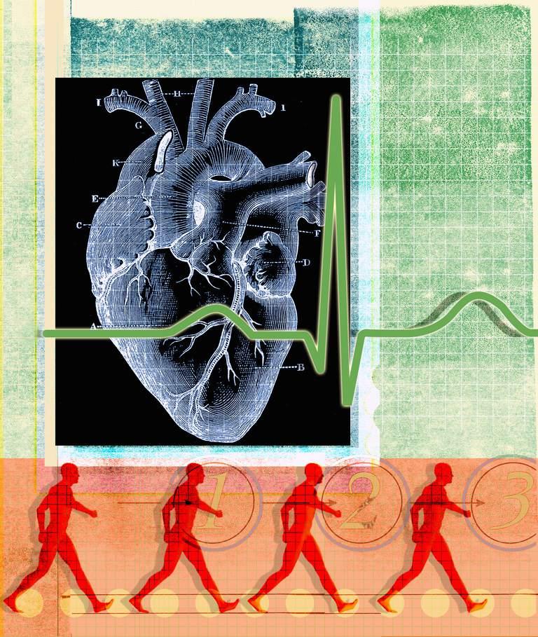Que es bueno para el corazon correr o caminar