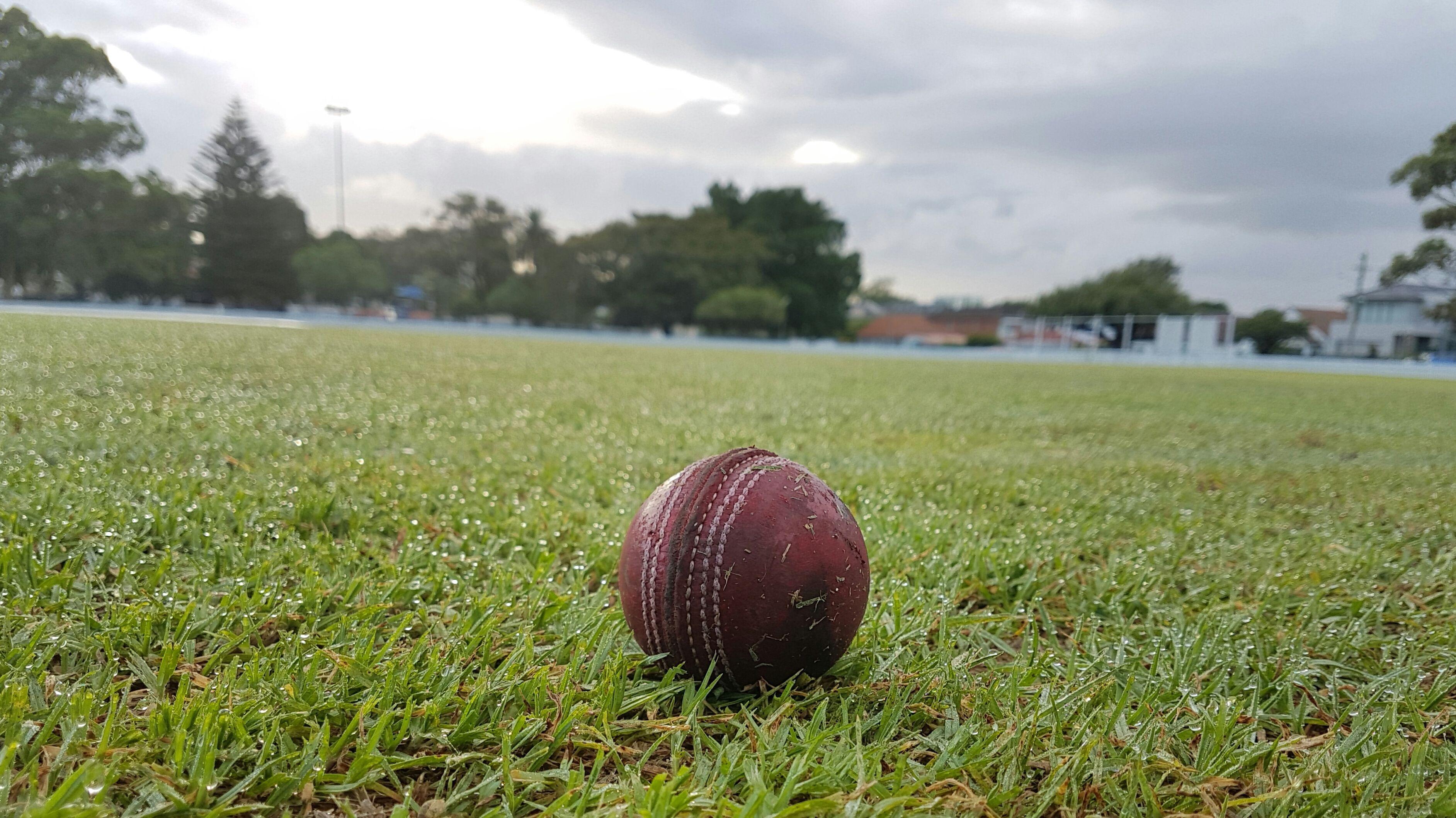 Cricket ball basics geenschuldenfo Choice Image
