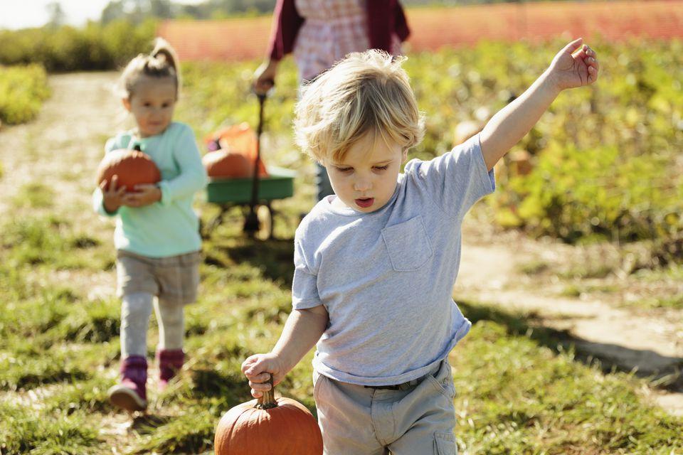 Boy carrying pumpkin