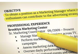 resume objective - It Resume Objective