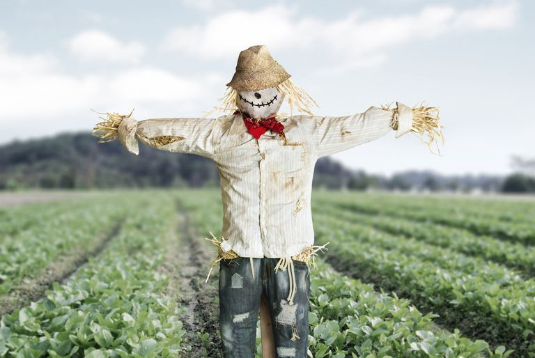FieldScarecrow_1500.jpg