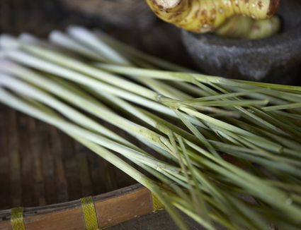 How To Cook Using Lemongrass