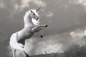 unicorn in a field
