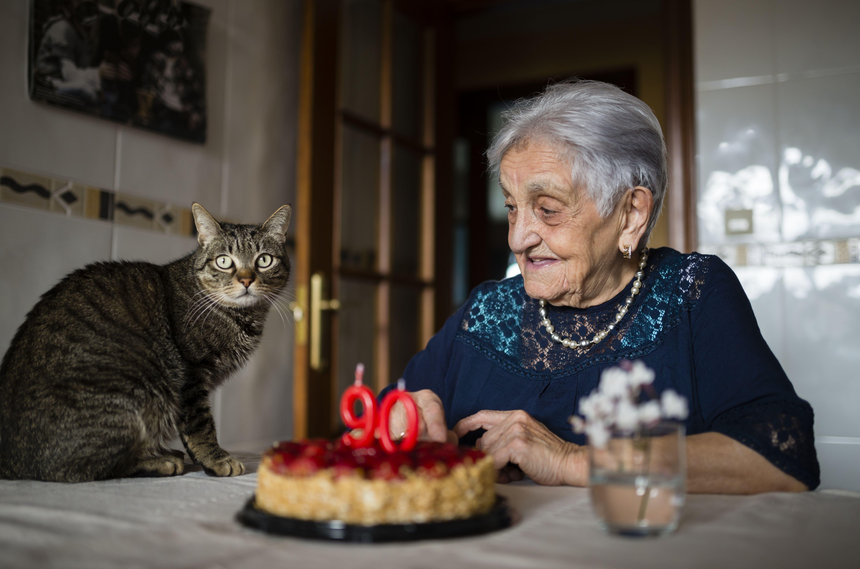 when does catnip affect kittens