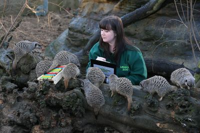 biology coursework london zoo Bede's as biology students recently took part in a trip to london zoo with the objective of gaining a deeper understanding of the purpose of zoos and their roles in.