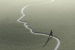 Figure on face shape path, artwork