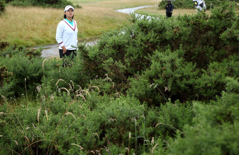 Yani Tseng peers into gorse bushes looking for her golf ball