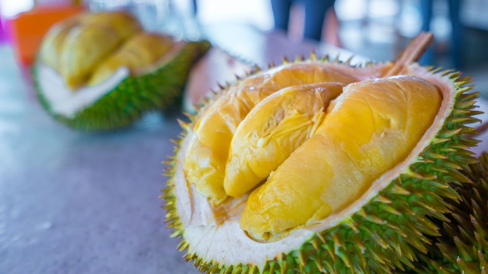 Durian, the king of fruits