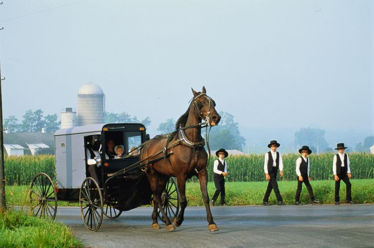 amish religion and beliefs Freedom of religion priesthood of all believers  and stem cell research to be inconsistent with amish values and beliefs amish life in the modern world.