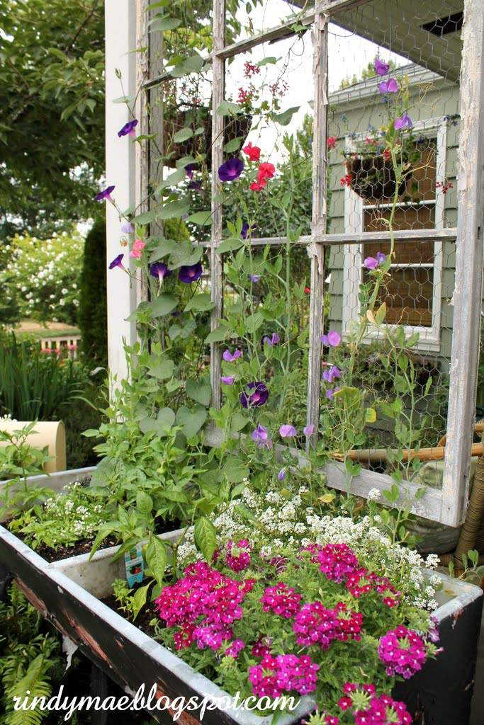 Trellis Garden Ideas 10 diy garden trellises that cost less than 20 diy garden trellis workwithnaturefo