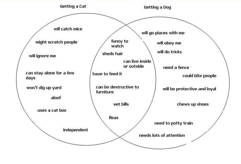 Using a venn diagram for a compare and contrast essay creating an outline for your essay using a venn diagram ccuart Choice Image