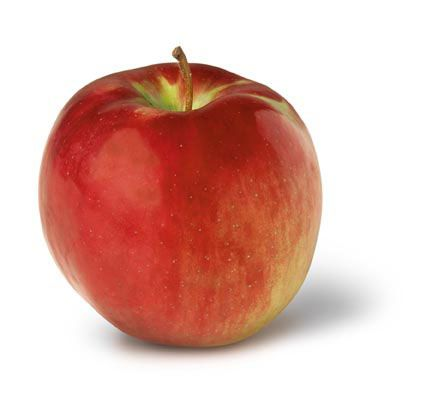 Ohio Cortland Apple