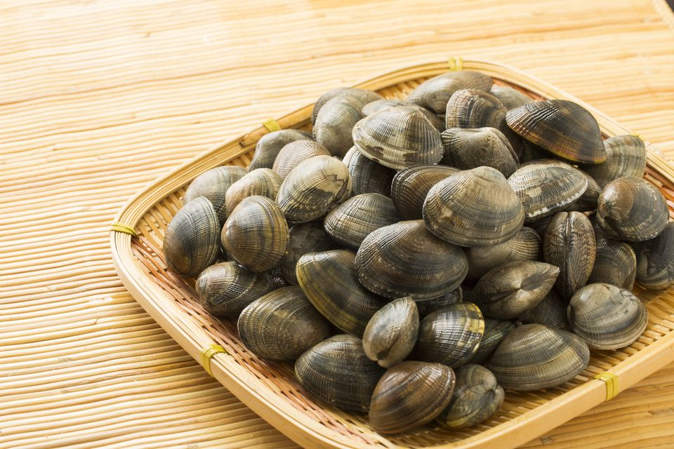 how to cook clams spanish style