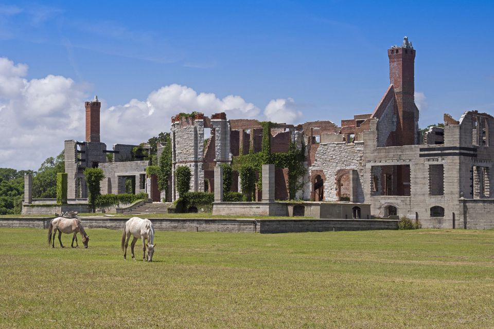 Wild Horses grazing in front of the Dungeness Plantation ruins on Cumberland Island, Georgia