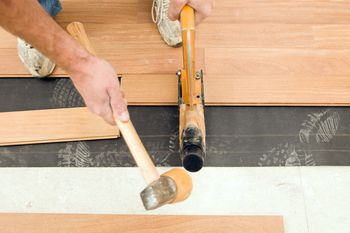 Most Durable Hardwood Floors the 3 best wood flooring options for homes with dogs